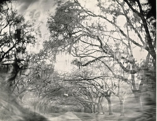 Sally-Mann 3.jpg